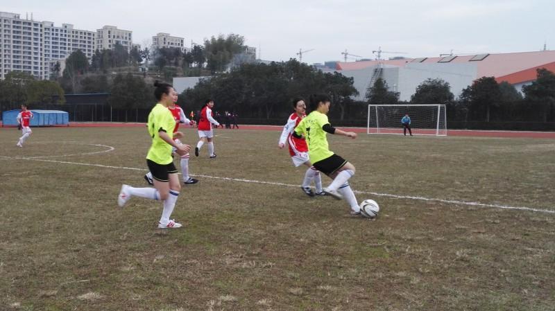 2015年ZSFL浙江省第七届中小学生校园足球联赛(丽水赛区)暨丽水市第四届校园足球联赛开赛