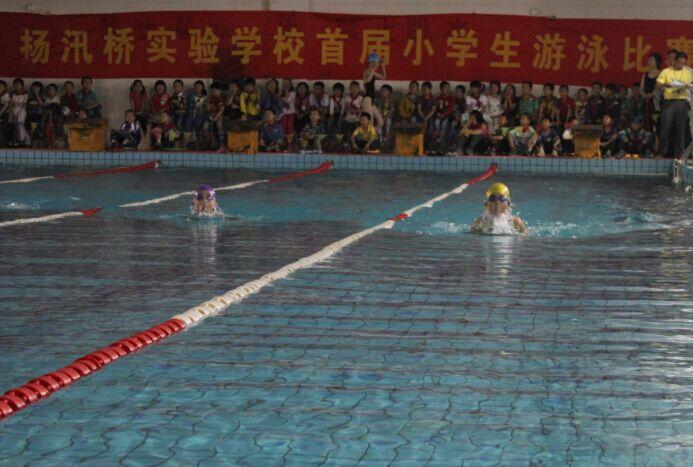 水乡孩子人人会游泳