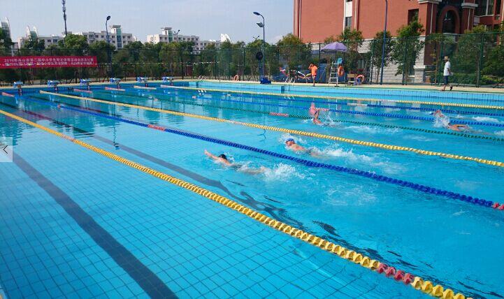 省中小学生游泳联赛舟山赛区比赛顺利举行
