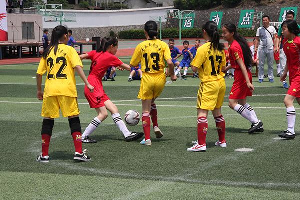 2015龙泉市中小学校园足球赛圆满结束