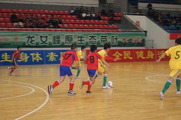 ZSFL浙江省第三届中小学生校园足球联赛丽水赛区比赛胜利结束